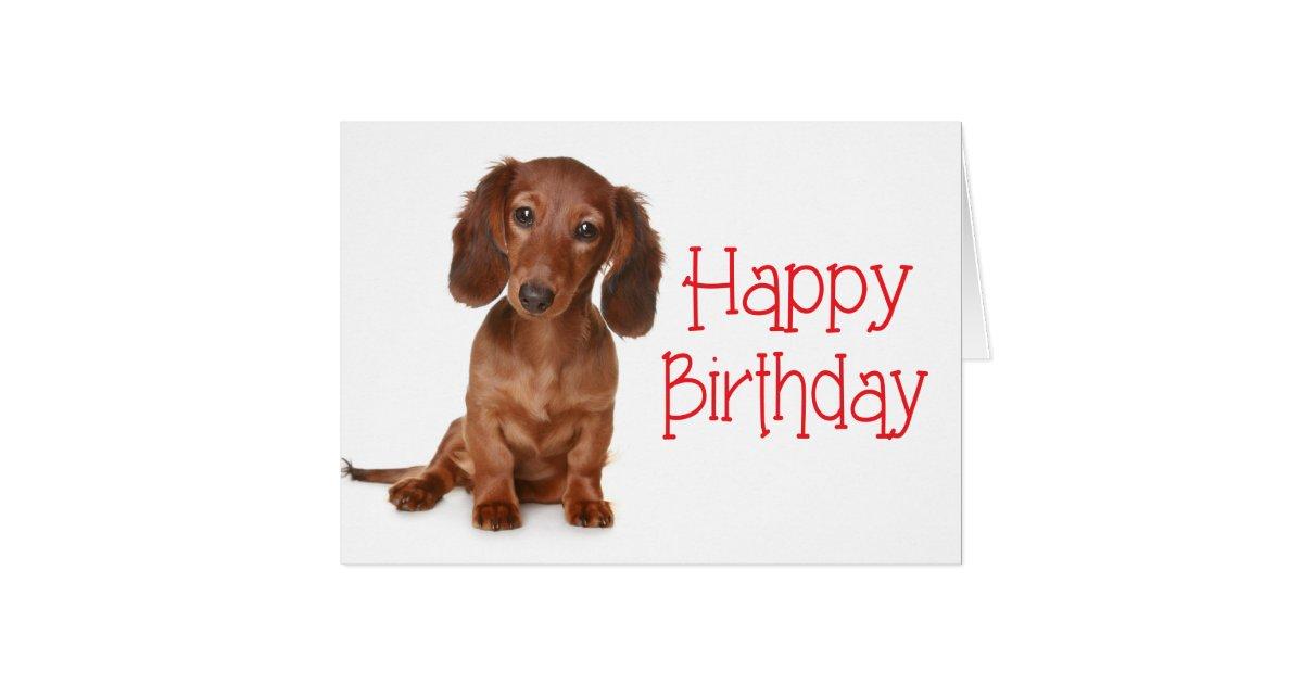 Happy Birthday Dachshund Puppy Dog Card | Zazzle.com