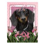 Happy Birthday - Dachshund - Winston Post Cards