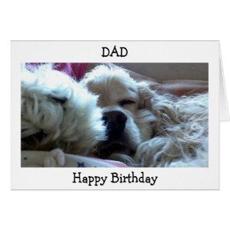 HAPPY BIRTHDAY DAD-TAKE NAP/DO WHATEVER U WISH CARD