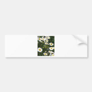 Happy Birthday Daisies Bumper Sticker