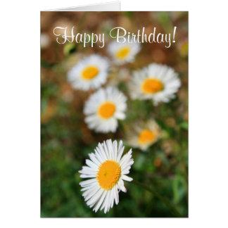 Happy Birthday Daisies Greeting Card