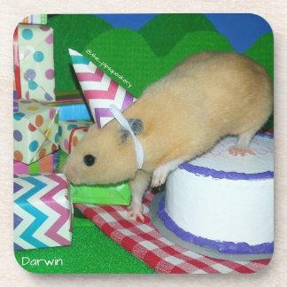 Happy Birthday Darwin! Coasters