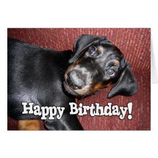 Happy Birthday - Doberman Pinscher Puppy Card