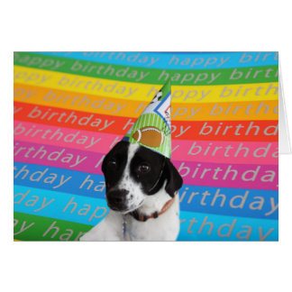 Happy Birthday Dog Colorful Text Banner Card