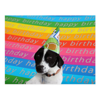 Happy Birthday Dog Colorful Text Banner Postcard