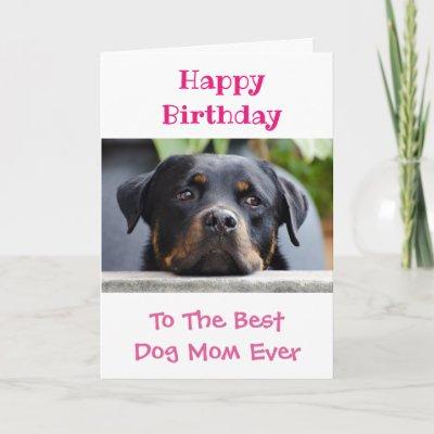 Worlds Best Dog Mom Happy Birthday Photo Gold Card