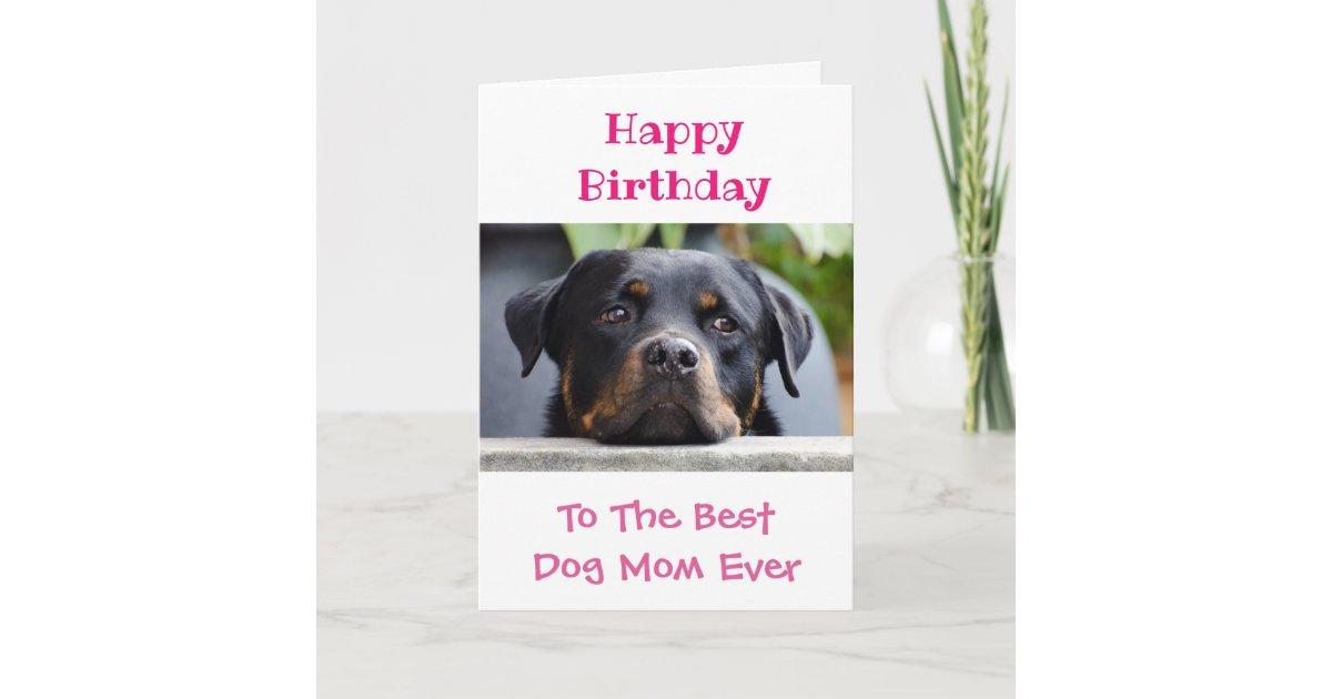 Happy Birthday Dog Mom Worlds Best Ever Pet Photo Card