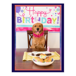 Happy Birthday Dog Party with My Dawg Postcard