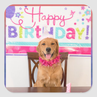 Happy Birthday Dog Party with My Dawg Square Sticker