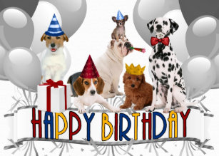 Happy Birthday Dogs From All Of Us Card