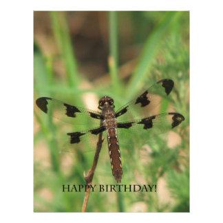 Happy Birthday Dragon Fly Letterhead