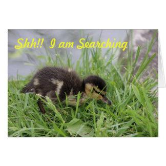 Happy Birthday Duck Card
