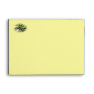 Happy Birthday - Eastern Chipmunk Envelope