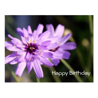 Happy birthday, elegant purple daisy flower postcard