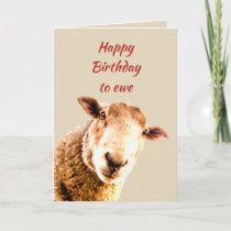 Happy Birthday Ewe Funny Sheep Animal Humor Card