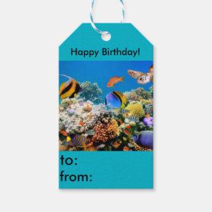 Hy Birthday Fish Aquarium Gift Tag