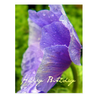 Happy Birthday Flower Post Card
