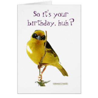 Happy birthday (for her) LolBirds card