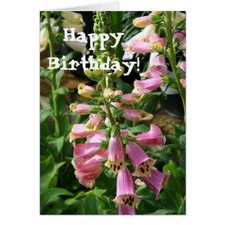 Happy Birthday Foxglove Greeting card
