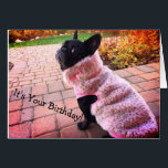 """Happy Birthday French Bulldog Card<br><div class=""""desc"""">Everyone deserves to be a Queen for one day!  Why not on their Birthday!</div>"""