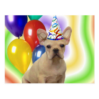 Happy Birthday French Bulldog postcard