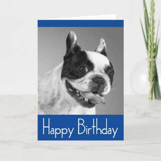 Happy Birthday French Bulldog Puppy Card Verse Zazzle