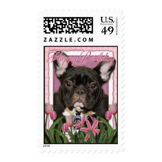 Happy Birthday - French Bulldog - Teal Postage