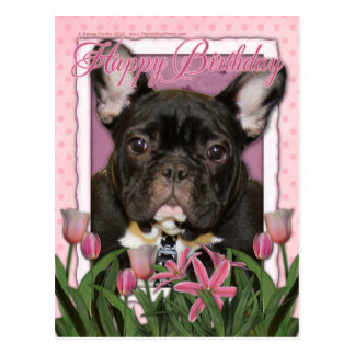 Happy Birthday - French Bulldog - Teal Postcard
