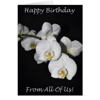 Happy Birthday From All Of Us White Orchid Card