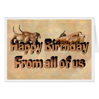 Happy Birthday from all the Dachshunds Card