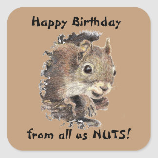 Happy Birthday from all us NUTS Cute Squirrel Fun Square Sticker