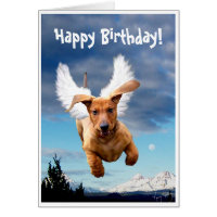 Happy Birthday from Michael the Bark Angel, Greeting Cards
