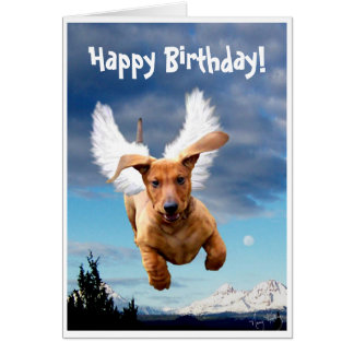 Happy Birthday from Michael the Bark Angel, Card
