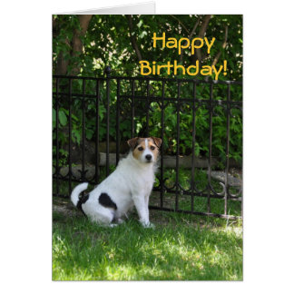Happy Birthday from the Dog Cards