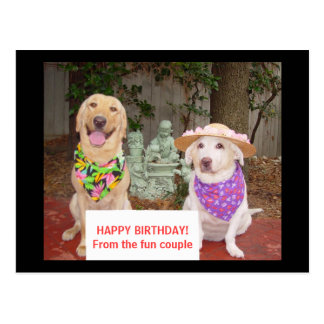 HAPPY BIRTHDAY! From the fun couple Postcard