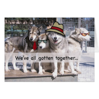 Happy Birthday from the Group, Huskies Card
