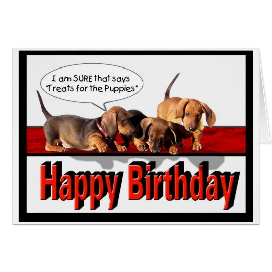 Happy Birthday from the puppies Card