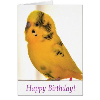 Happy birthday from Tweetie Greeting Card