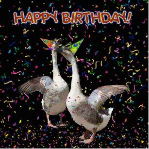 Днем, открытка гусь с днем рождения