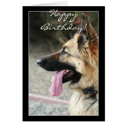 german shepherd birthday card 1000 images about happy birthday on pinterest birthday 9979