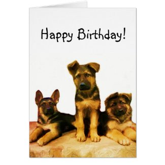 Happy Birthday German Shepherd puppies card