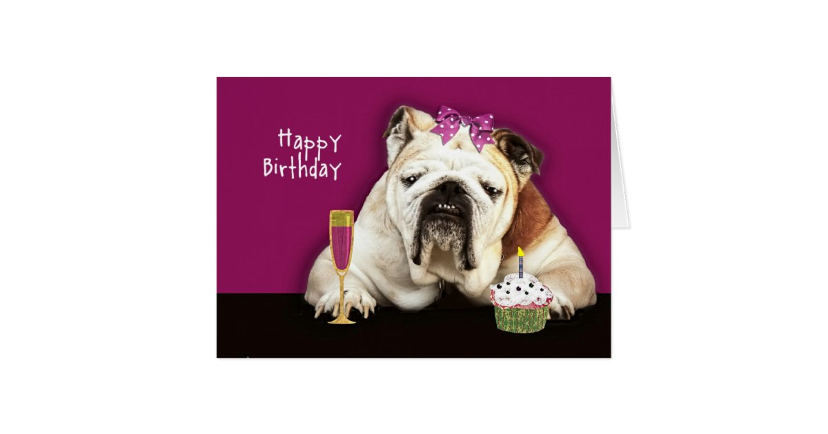 Happy Birthday Getting Older Funny Dog Pink Bow Card
