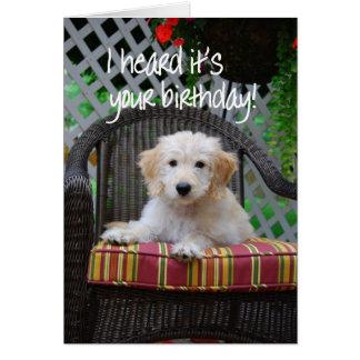 Happy Birthday Golden Doodle Puppy Card