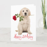 "Happy Birthday Golden Retriever Puppy Dog Card<br><div class=""desc"">Brighten someone&#39;s special day with this cute Golden Retriever puppy dog with a red rose Happy Birthday card. Inside verse reads: May your birthday be filled with the warm sunshine of love and the bright rainbow colors of laughter. Dog birthday cards are great for * businesses - vets, groomers, breeders...</div>"