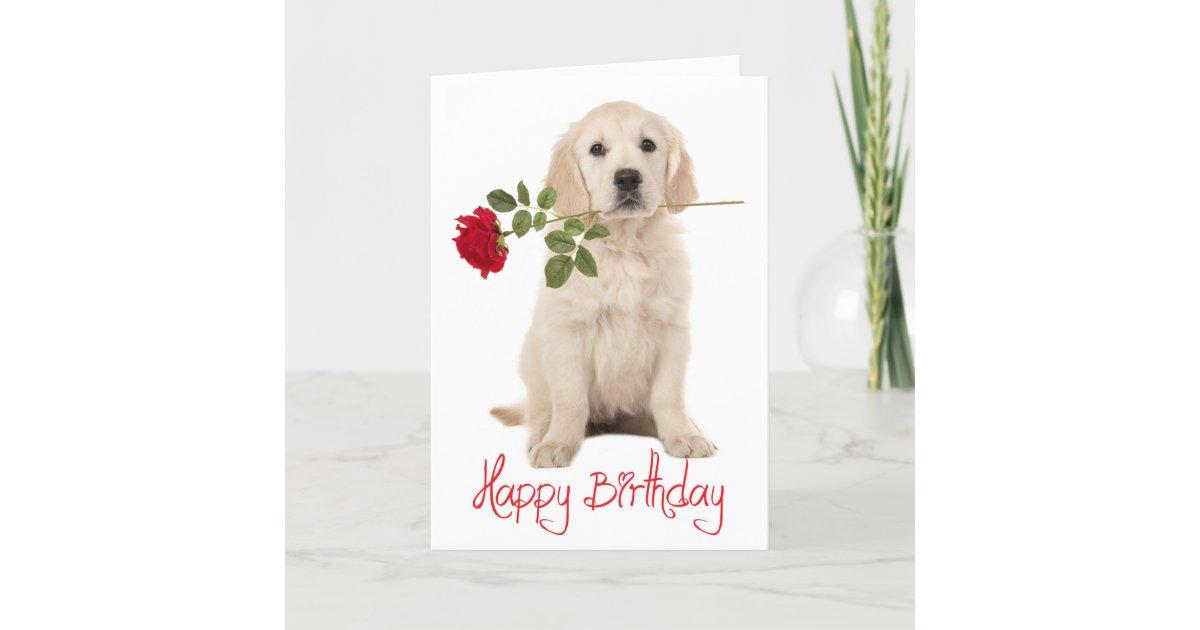 Happy Birthday Golden Retriever Puppy Dog Card Zazzle