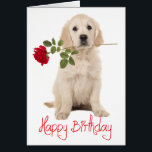 """Happy Birthday Golden Retriever Puppy Dog Card<br><div class=""""desc"""">Brighten someone&#39;s special day with this cute Golden Retriever puppy dog with a red rose Happy Birthday card. Inside verse reads: May your birthday be filled with the warm sunshine of love and the bright rainbow colors of laughter. Dog birthday cards are great for * businesses - vets, groomers, breeders...</div>"""
