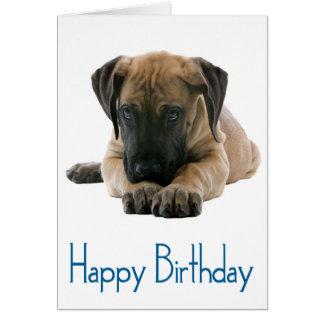 Happy Birthday Great Dane Puppy Dog Card - Verse