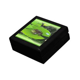 Happy Birthday Greeting - Bullfrog on Lily Pad Keepsake Box