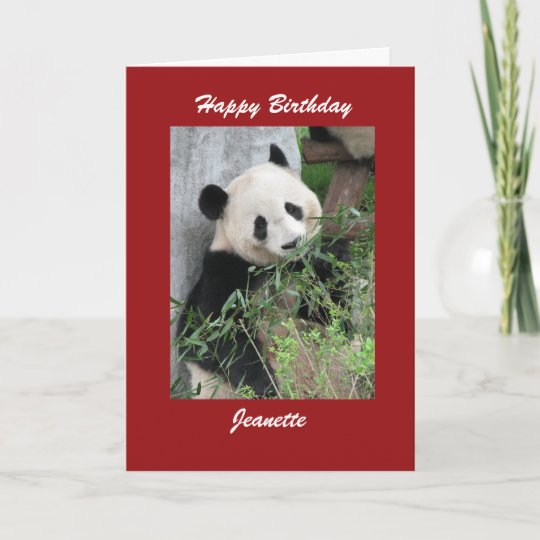 Happy Birthday Greeting Card Panda Red Border Zazzle