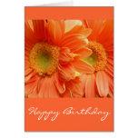 Happy Birthday Greeting Cards
